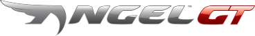 Pirelli ANGEL™ GT motorbike tire