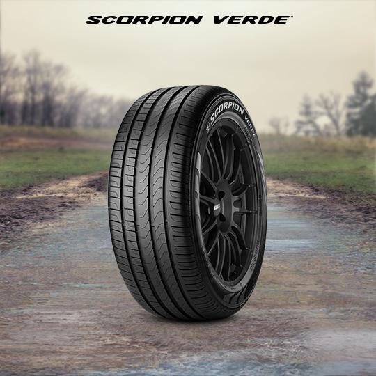 Scorpion Verde