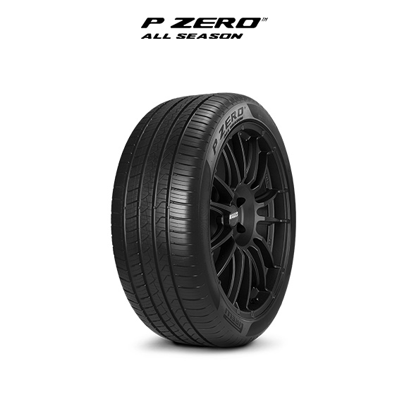 PZERO ALL SEASON 315/30 r22 Tyre