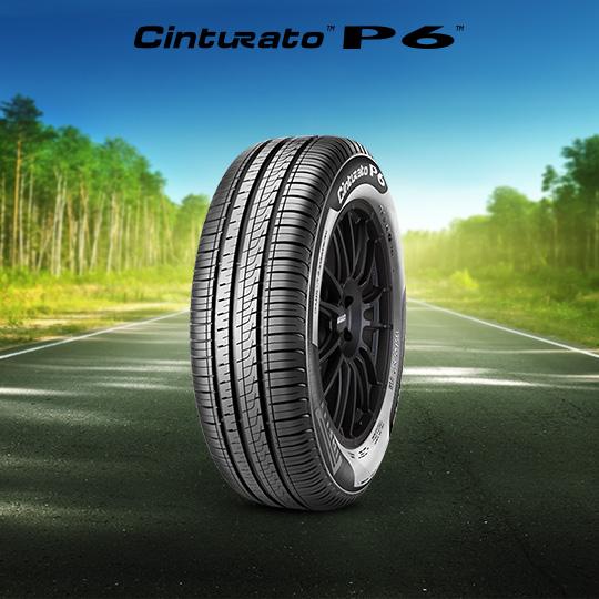 自動車タイヤ CINTURATO P6 (P6C2)